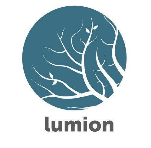 Lumion Pro Crack 12.1 License Key (MAC) Free Download 2021