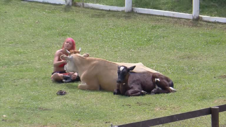 Em conversa com as vacas, Valentina critica Bil e Gui Araujo - A Fazenda 13  - A Fazenda 13 - R7 24 Horas
