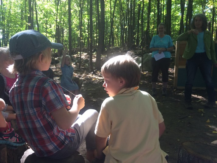 Hearing about Leaf Litter