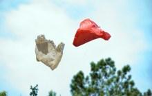 Bills seek to limit disposable plastic bags