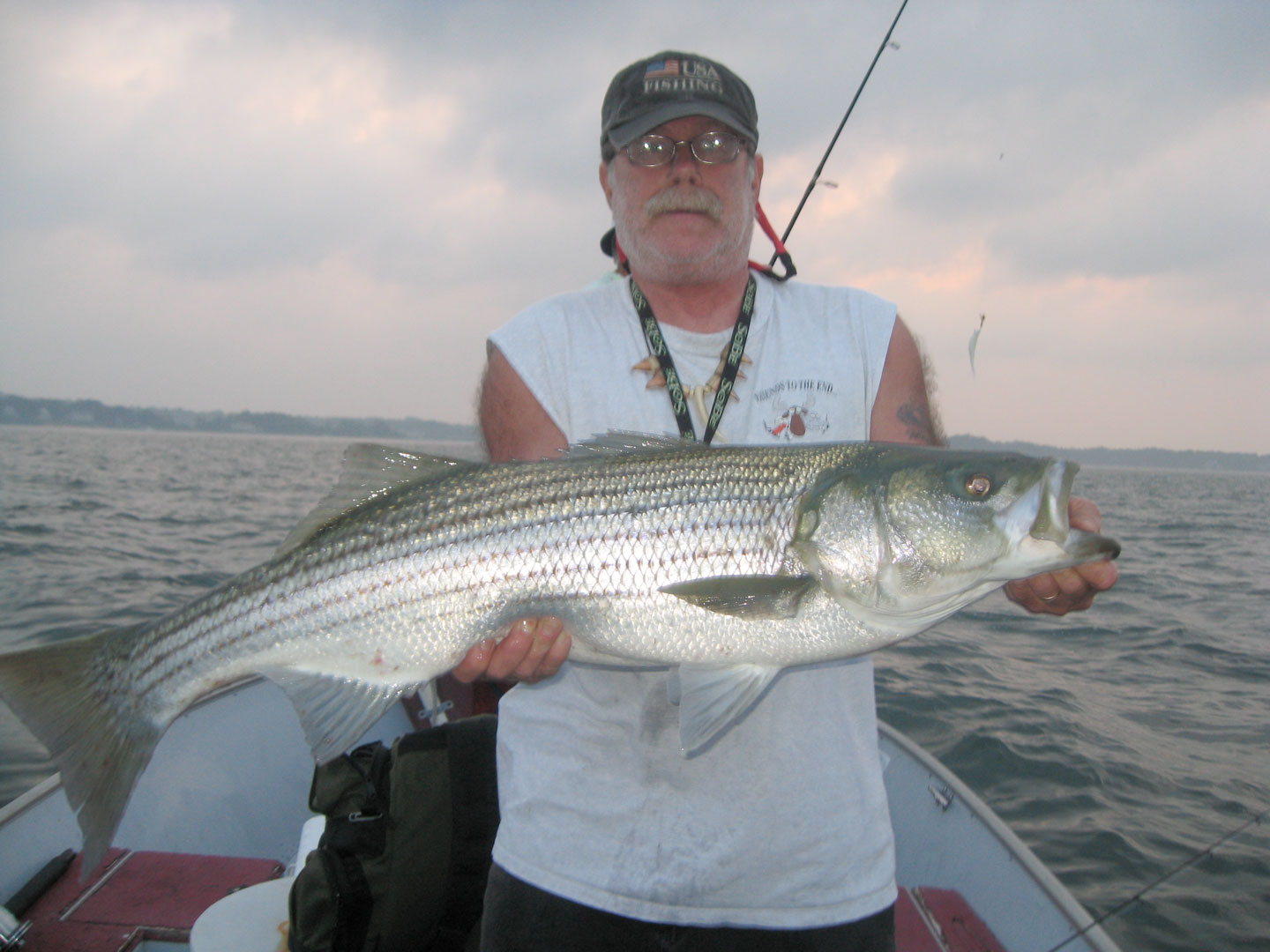 2010 striped bass laws massachusetts foto 545