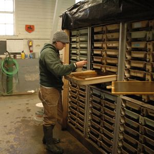 Fish culturist Sarta Nebelecky inspects tiny salmon fry that are growing in stacks of trays showered by cascading fresh water at the historic Roxbury Fish Hatchery, built in 1891. The hatchery primarily raises rainbow and brook trout, but because its exterior rearing ponds were wiped out by tropical storm Irene, sweeping some 70,000 trout downstream, the state's hatchery efforts have taken a hit.  Photo by Andrew Nemethy