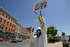 Lisa Sheridan, 52, of West Rutland, dressed in a pesticide applicator suit protesting the use of Monsanto's genetically engineered seeds and the herbicide Roundup outside the farmer's market in Rutland. Photo by John Herrick/VTDigger
