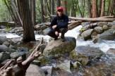 Mist Trail - - 28