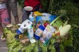 Eten van de Gorilla's