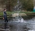 Dichter bij Dolfijnen in het water Dolfinarium Harderwijk