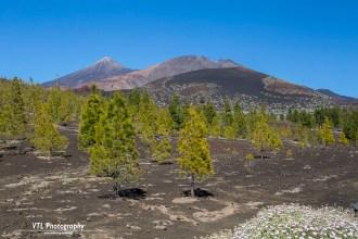 Foto 1. El Teide Tenerife