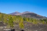 Foto 2. El Teide