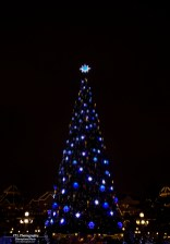 Christmas tree Disneyland Paris
