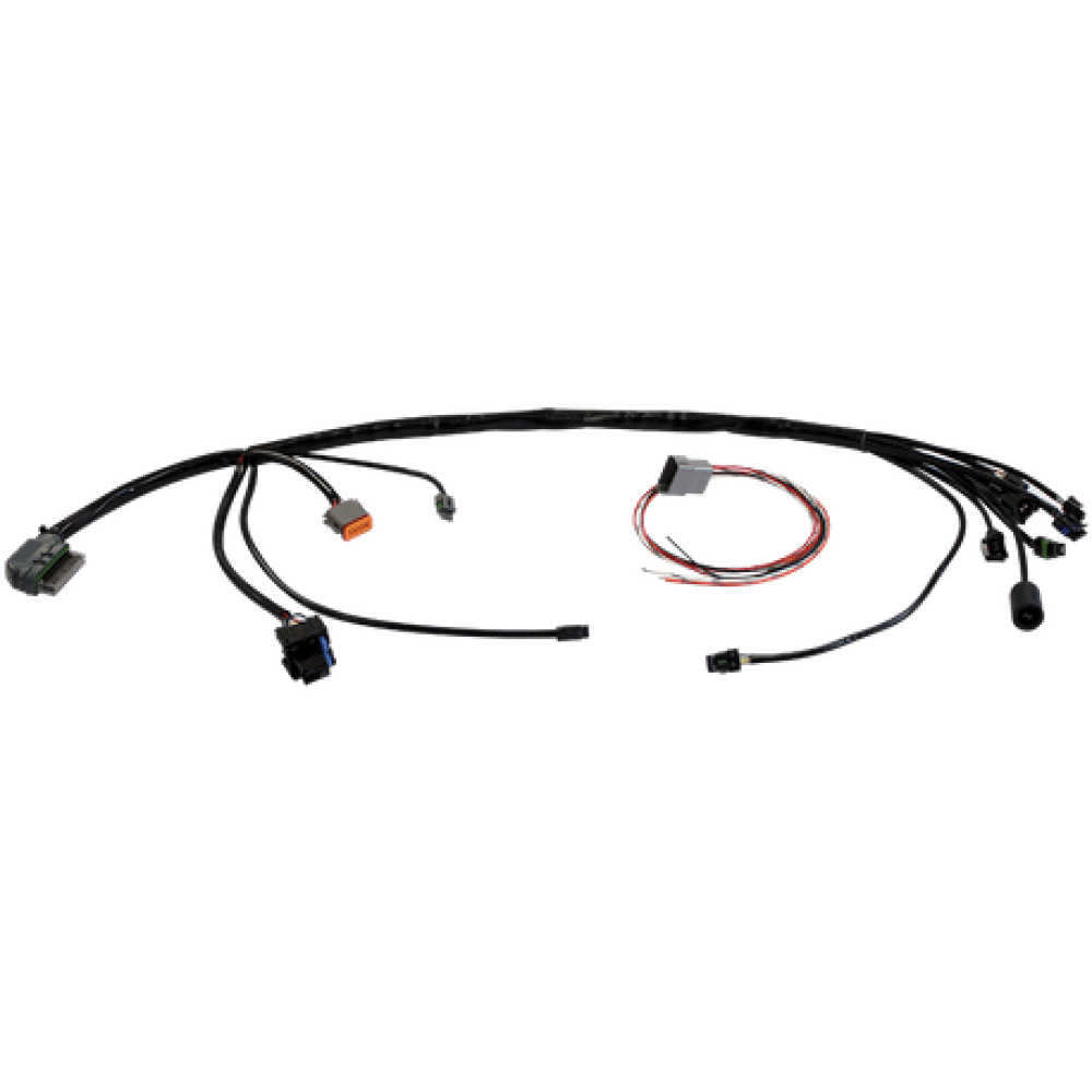 S&S Harness, Wiring, Engine, EFI, Delphi Style, Universal