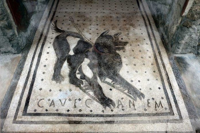 Mosaic made of black and white tiles depicting a fierce looking guard dog with the words