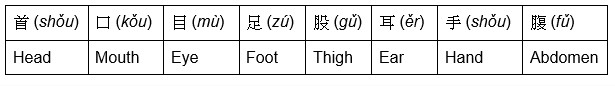 Chart showing the 8 parts of the body associated with the Chinese 8 trigrams.