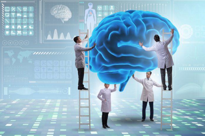 Doctors examining the human brain.