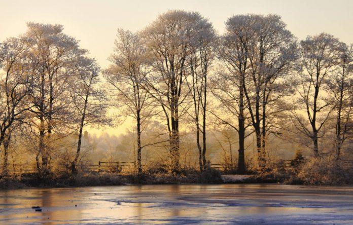 A frozen winter landscape with golden sunset.