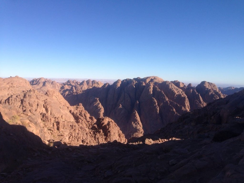 Research to Mount SINAI-17