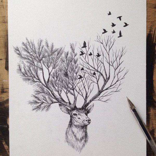 Pinterest Deer Drawings