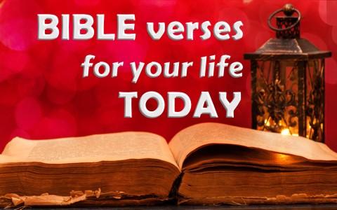 6 bible verses to