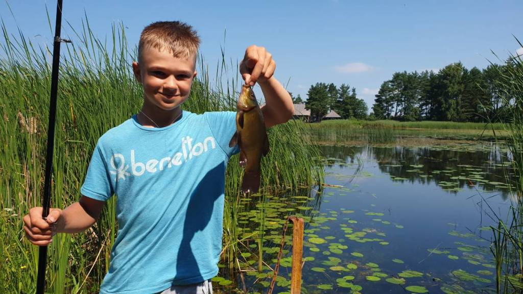 Lietuvos nacionalinė žuvis - Lynas