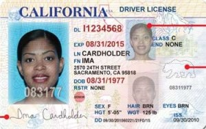 Forged or Counterfeit Drivers License