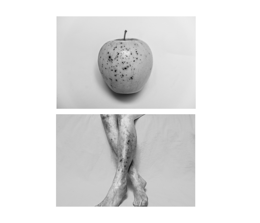 Diptych_6