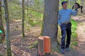 Määrchen-Naturwald-Pfad