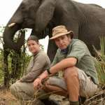 Born in the Wild: A Full and Frank Look at the Sex Lives of Elephants!