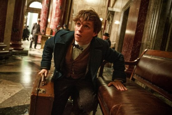 Newt Scamander Eddy Redmayne Fantastic Beasts and Where to Find Them Review
