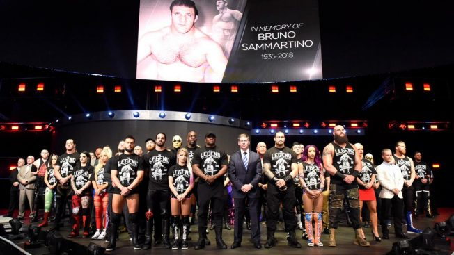 Tribute to Bruno Sammartino