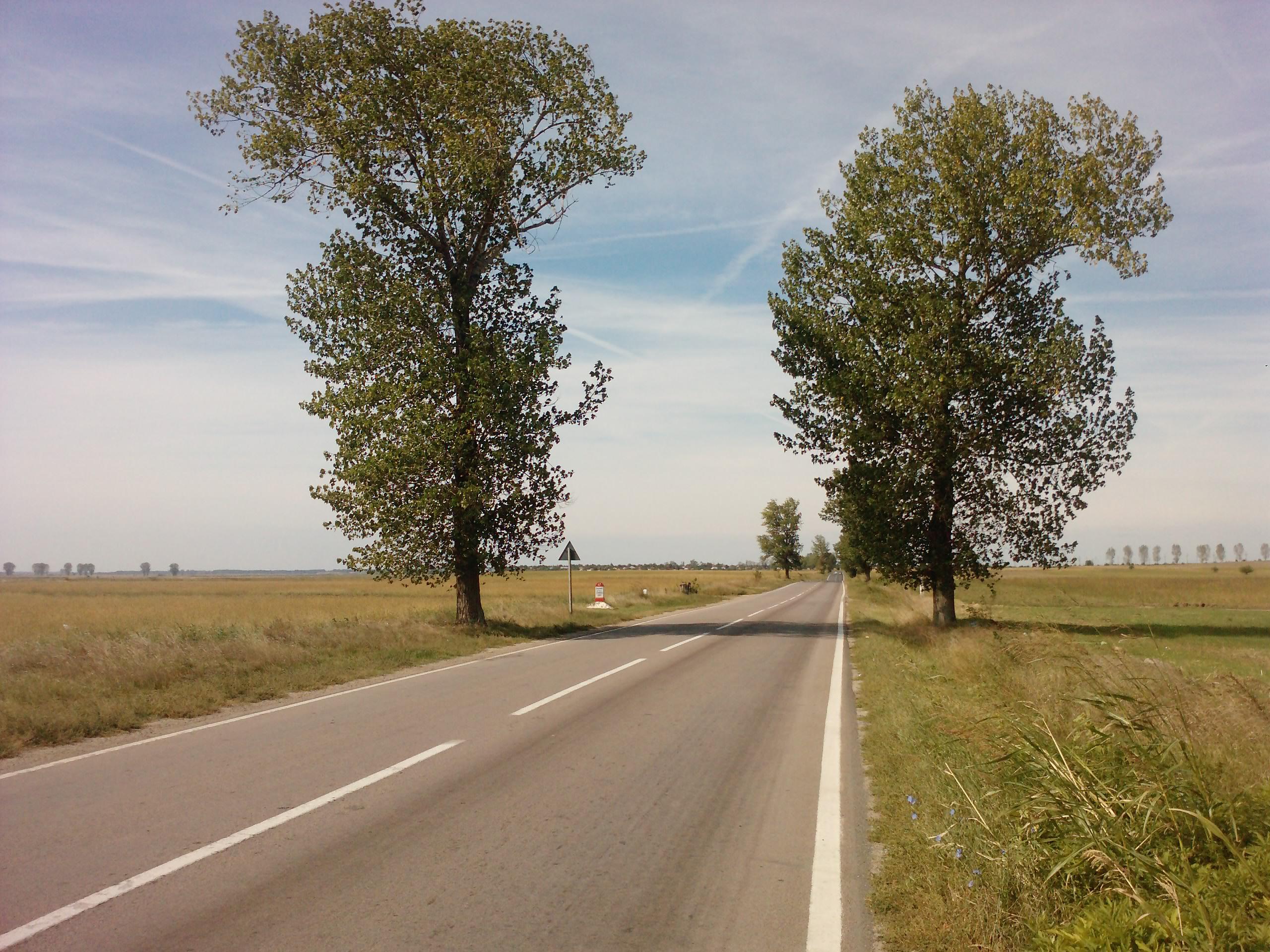 160 Km singur pe bicicleta