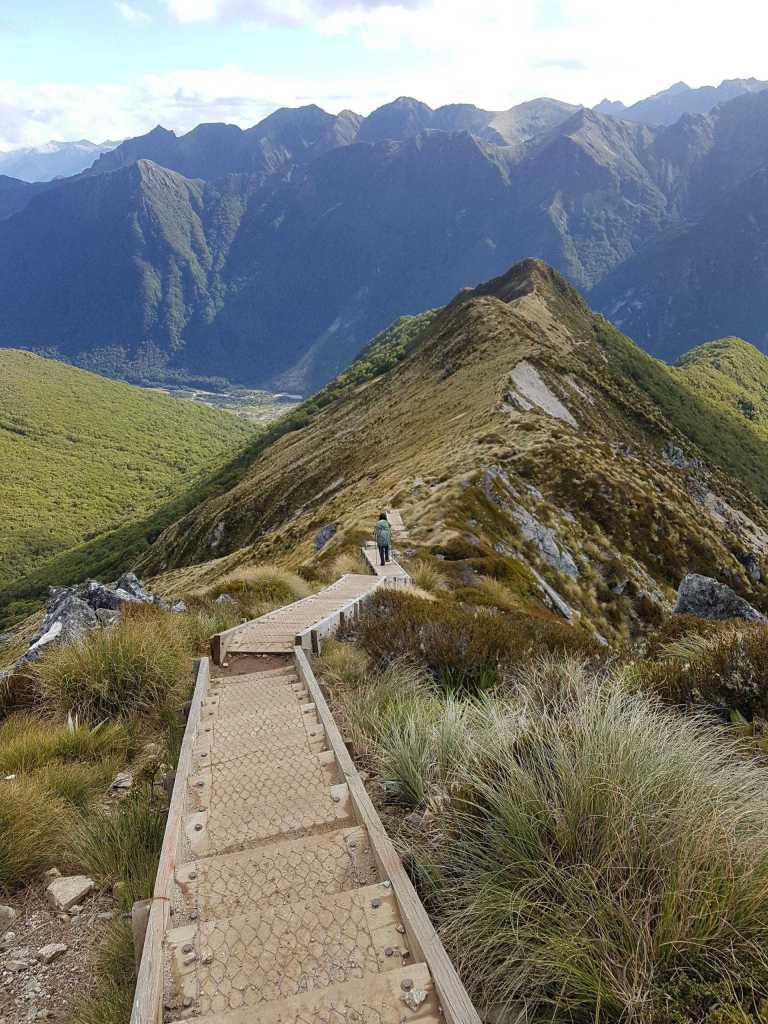 On the way down to Iris Burn Hut and Campsite Kepler Track NZ