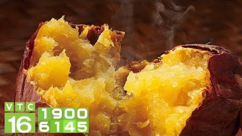 cách nấu khoai lang mật - Nông dân làm giàu từ khoai lang mật | VTC16