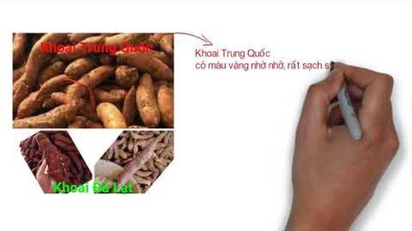 cách nấu khoai lang mật - phân biệt khoai lang mật trung quốc - đà lạt