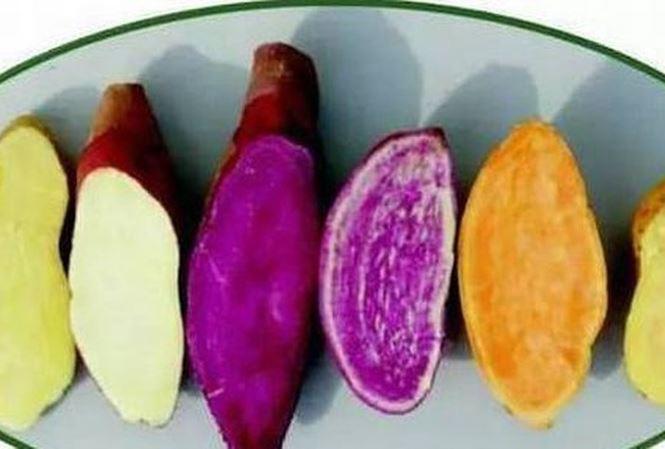 Những amp;#34;cấm kỵamp;#34; khi ăn khoai lang mà chị em là tín đồ món này nên biết - 1