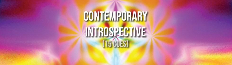 Contemporary Introspective