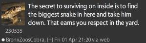 SnakeP2