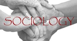 sociology-fall-20133