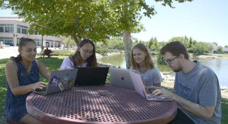 Students using laptops on campus