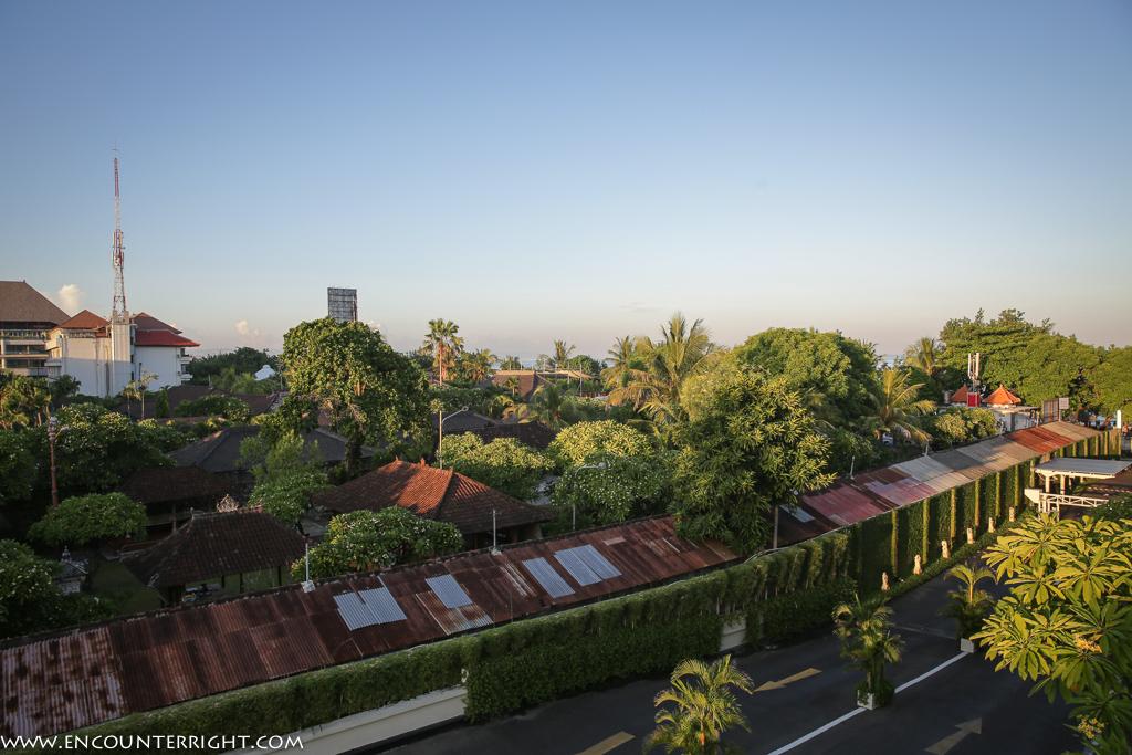 Bali1 (84 - 84)