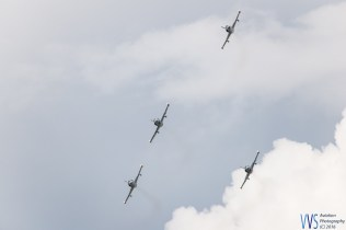 A quartet of Slovak L-39 Albatroses.