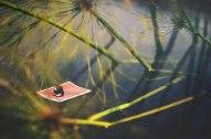 miniature-world-photo-manipulations-by-fiddle-oak-zev-nellie-12