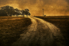 Texas, farm, road