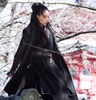 Shu Qi, the Assassin, China