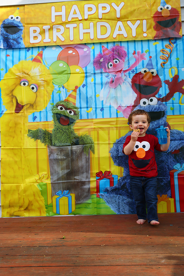 a perfect sesame street birthday party
