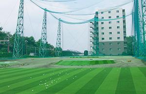 義澤ゴルフ練習場