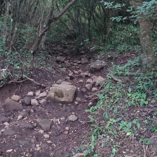 1424久しぶりに石が出てきました!明神ヶ岳に近づいてきた感じはします。