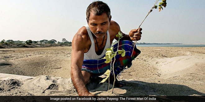 A man who waved a gun at a restaurant wednesday night was fatally shot by police in west suburban forest park. Forest Man Of India A Farmer From Assam Has Grown A Forest On Barren Land By Planting Trees For Last 40 Years Swachh Warrior