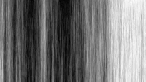 noir ligne bois noir et blanc arbre