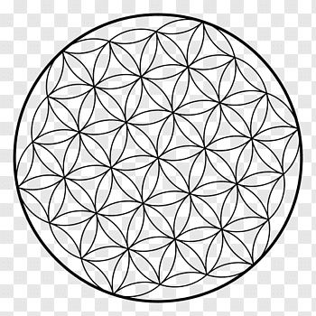 The Fractal Geometry of Nature Koch snowflake Curve