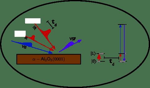 Interfacial Molecular Spectroscopy: Kramer Campen's Group