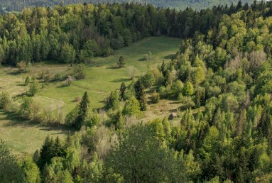 Wieża widokowa na Magurkach opis szlaku